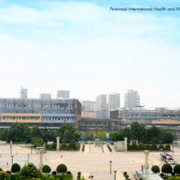 Perennial International Health and Medical Hub, Chengdu ub, Chengdu